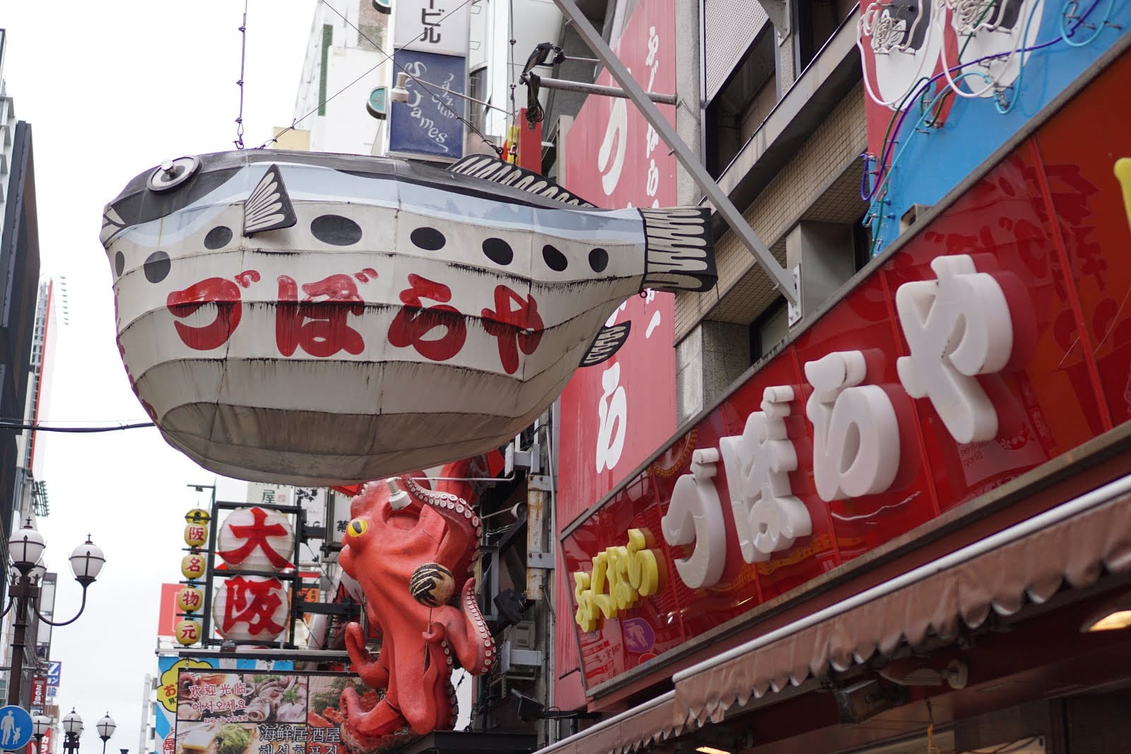 Zuboraya - Osaka Pufferfish Restaurant