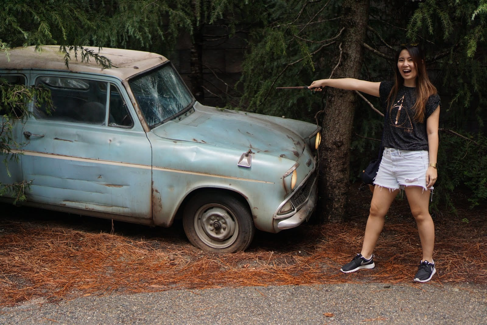 Wizarding World of Harry Potter - Ford Anglia
