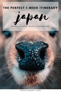The Perfect 7 Day Itinerary for Osaka, Kyoto, Nara and Hiroshima, Japan 2