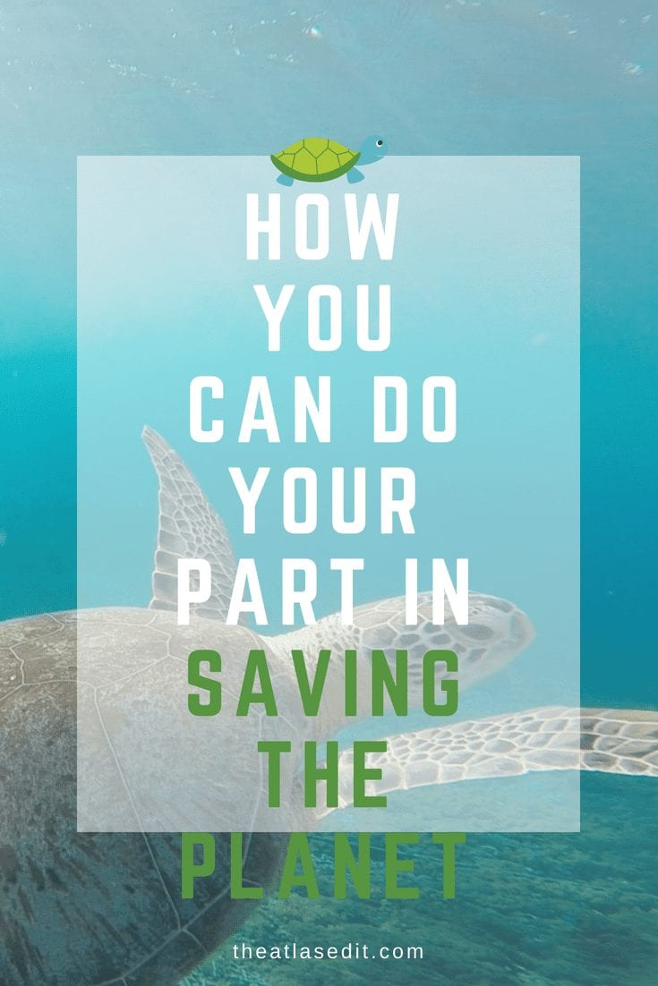 HOW YOU CAN DO YOUR PART IN SAVING THE PLANET